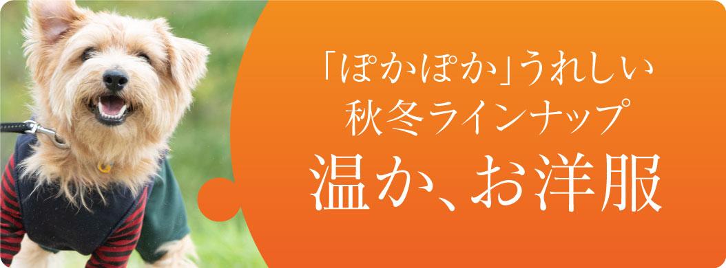 banner_AW.jpg