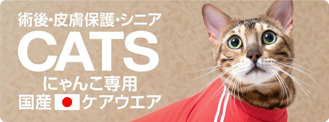 banner_cats_210310.jpg