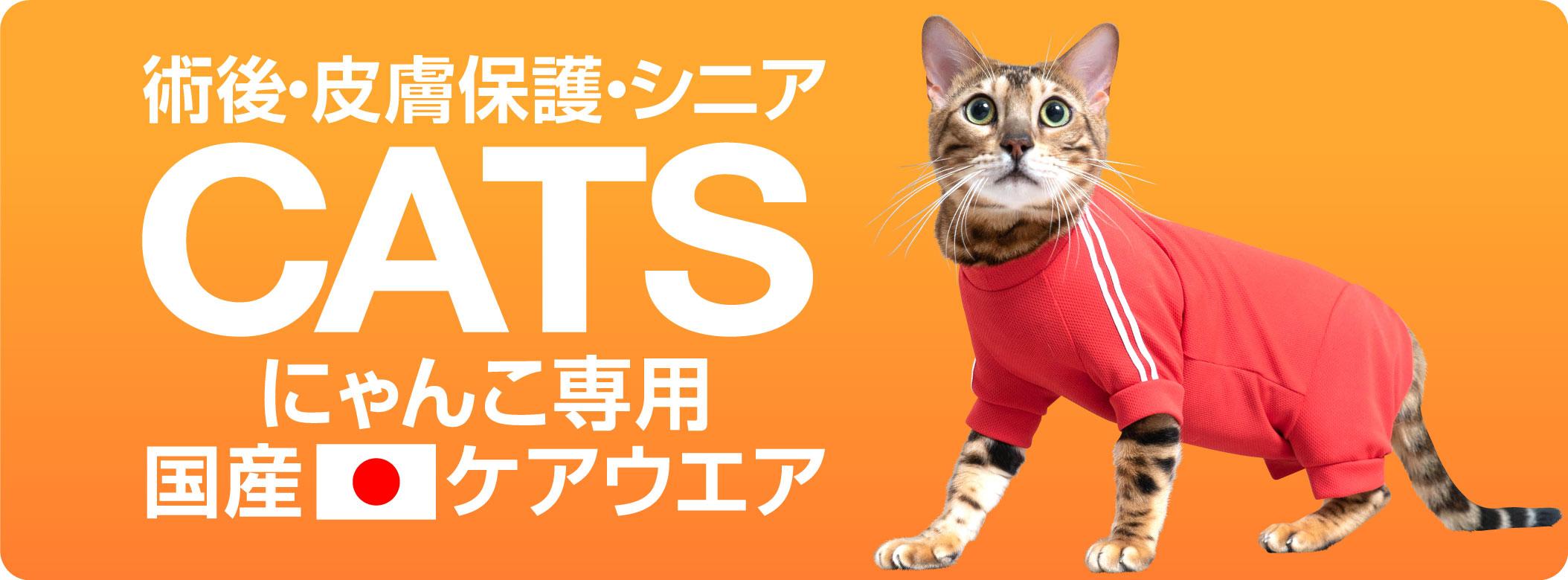 catsitem_201211.jpg