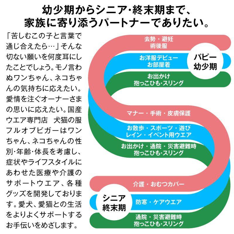 7/ブルー